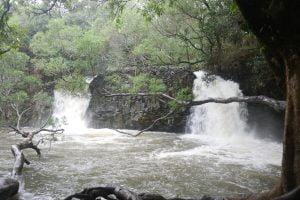Road to Hana - Twin Falls