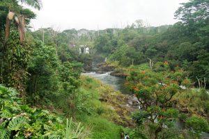 Hilo - Boiling Ponds
