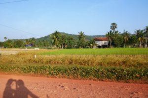 Auf dem Weg zur Pfefferfarm