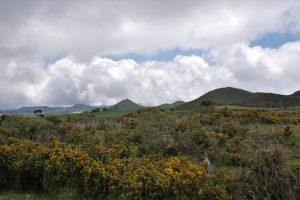 Coteau du Nez de Boeuf