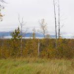 Von Anchorage nach Talkeetna