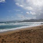 Kauai Shores Hotel - Strand