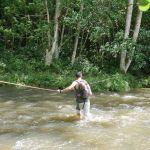 Wailua River Kajakausflug