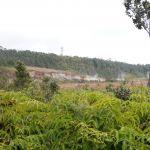 Steam Vents & Sulpuhr Banks Trail