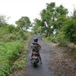 Rollerausflug über die Insel