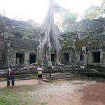 Ta Prohm Tempel - Angkor Wat