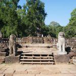 Elefanten Terrassen
