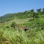unterwegs in Kampot