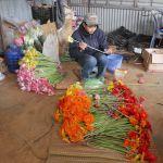 Da Lat - Blumenfarm