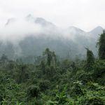 Tra Ang Cave Wanderung