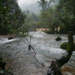 Tra Ang Cave - Camp
