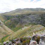 Fernkloof Nature Reserve - Hermanus