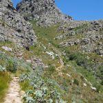 Wanderung zum Tafelberg