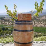 Weingut Vino Indomita