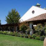 Weingut Casas del Bosque